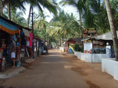 Эта часть Гоа довольно безлюдна, а местные жители не так разбалованы туристами, как в другой части индийского побережья. И в Агонде почти нет хиппи с их бестолковыми пластиковыми очками. Зато здесь есть большое количество храмов и мест для занятия йогой.