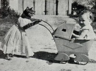 Котоколяска мощностью 1 кошачья сила с дрессированной кошкой в комплекте (1938)