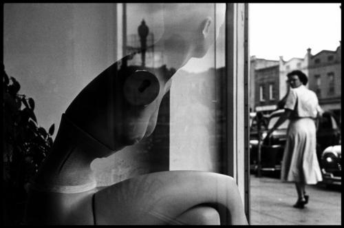 """""""Взгляд"""", фотография Эллиотта Эрвитта, 1950 г."""