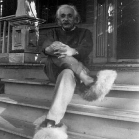 Эйнштейн и его пушистая обувь.