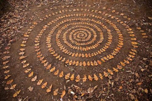 Ленд-арт из дубовых листьев.