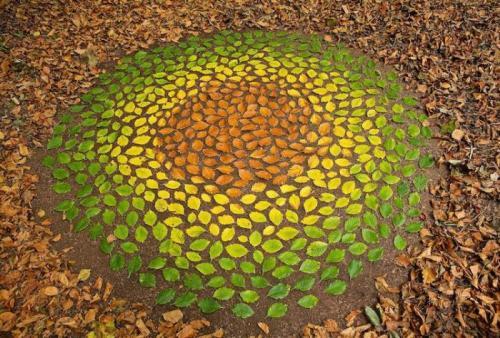 Ленд-арт из листьев разных цветов.