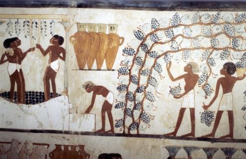 """Пивоварни для богов Древние египтяне любили выпить и даже проводили специальные """"Праздники пьянства"""". Были у них и специальные пивоварни, посвященные богам. Об этом узнали, когда недавно археологи нашли гробницу 3000-летнего возраста, надпись на которой гласила, что в ней похоронен """"главный пивовар бога мертвых"""". Египтологи подтверждают: алкоголь в Древнем Египте играл важную роль и как средство увеселения для людей, и как подношение богам. А пиво было одновременно самым популярным и самым доступным видом выпивки."""