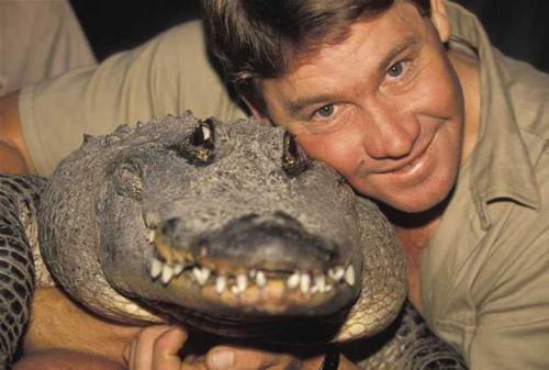 """Известный как """"Охотник на крокодилов"""", Ирвин отснял 60 эпизодов своего собственного шоу о животных. Именно его увлечение его и сгубило: во время подводных съемок скат ударил его ядовитым хвостом прямо в грудь."""