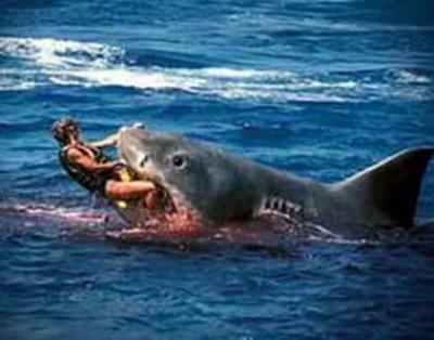 игра акулы лего