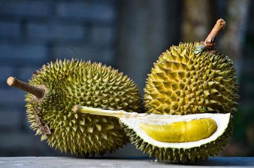 Дуриан Плод источает зловонный аромат, но имеет божественный вкус, напоминающий сладкий крем из яиц и молока.
