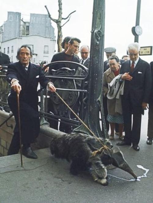 Сальвадор Дали с домашним муравьедом выходит из метро, 1969 год