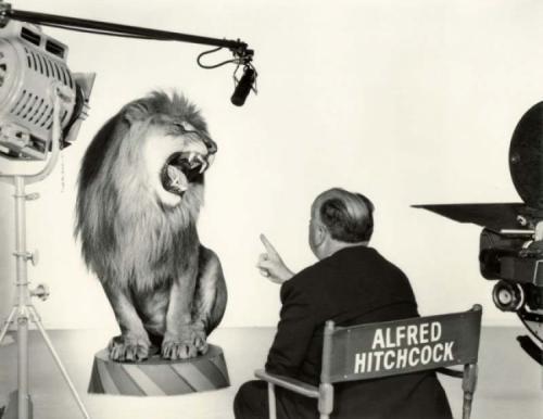 Альфред Хичкок, руководящий львом во время съемки легендарной заставки студии Metro-Goldwyn-Mayer, 1958 год