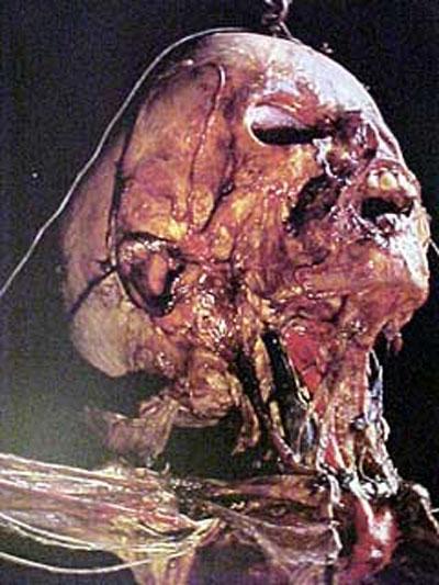 Мумифицированная голова ребенка, с проявленными венами и артериями...