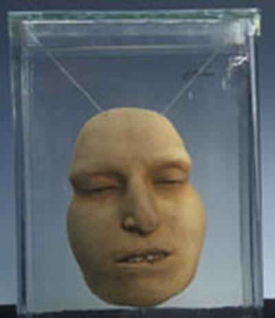 Первоначальной целью создания коллекции были медицинские исследования и образование, но в наши дни коллекция медицинского факультета превратилась в музей.