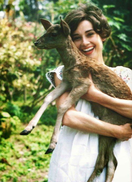 11. Одри Хепбёрн – оленьЛегенда фильмографии и икона моды, Одри Хепбёрн завязала невероятную дружбу во время съёмок фильма «Зелёные особняки», в котором Одри играла молодую девушку, живущую в венесуэльских джунглях. У её героини в фильме была тонкая гармония с природой и за ней повсюду следовал оленёнок.  Она и подумать не могла, что этот оленёнок вскоре станет её лучшим другом. Дрессировщик животных на съёмочной площадке предложил Одри взять оленёнка к себе домой, чтобы лучше с ним познакомиться. Вскоре после этого они были неразлучны как на площадке, так и за её пределами.