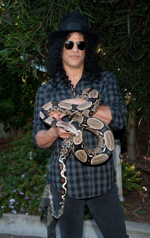 13. Слэш – змеиГитарист и бывший участник американской рок-группы «Guns N' Roses», Слэш являлся гордым владельцем 80 змей, многих из которых можно увидеть в его музыкальных видеоклипах.   Слэш обладает обширными познаниями об этих чешуйчатых домашних любимцах и даже появлялся на обложках нескольких журналов, посвящённых рептилиям.