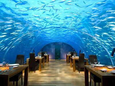 Местом отеля является ресторан