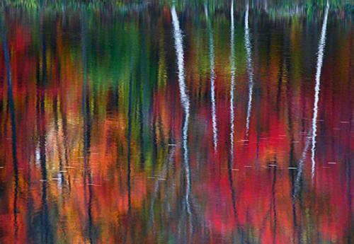 Питер Лик — «Один» Снимок нью-гемпширской реки, созданном ландшафтным фотографом Питером Ликом, сравнивают с живописью импрессионистов.Цена — $1 000 000.