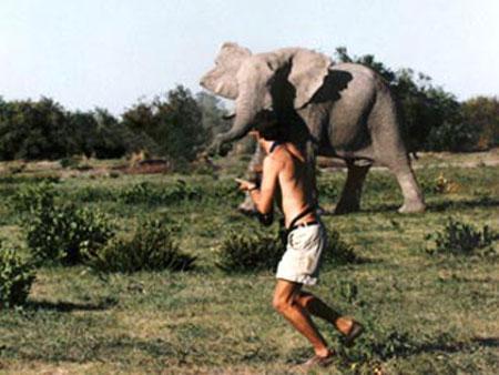 <B>Разбушевавшийся слон ворвался в одну из деревень в индийском штате Ассам, убив троих человек и ранив еще семерых.</B> По свидетельству очевидцев, лесного гиганта привлек запах самодельного пива. Слон просто обезумел... Через несколько секунд фотограф-любитель будет растоптан и смешан с землей...