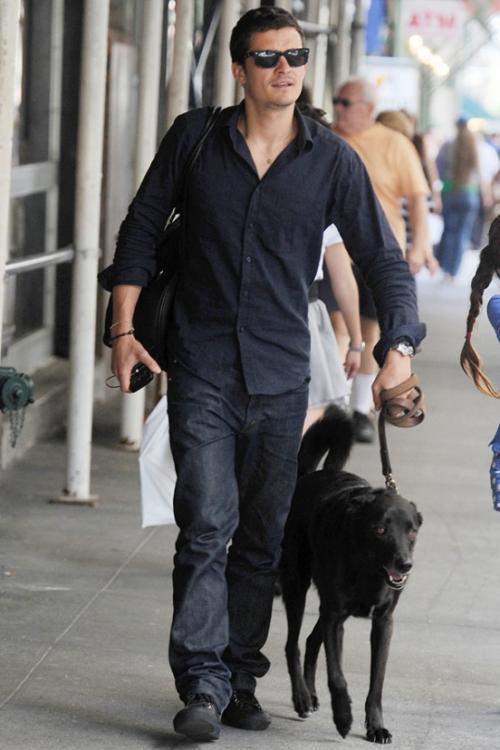 Орландо Блум (Orlando Bloom): «Я увидел этого пса на съемках фильма «Царство небесное» и сказал ему: «Давай-ка я тебя почищу, и мы посмотрим что произойдет». Ну а когда я закончил, то понял, что уже не смогу с ним расстаться и обязательно покажу ему свой уютный дом».