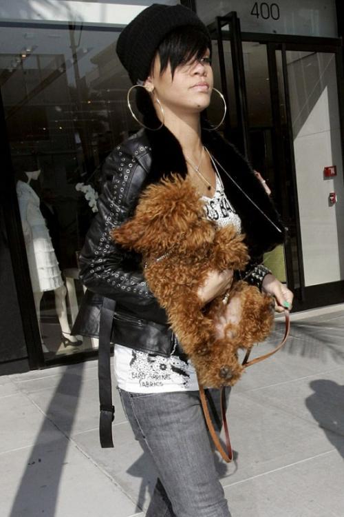Рианна (Rihanna): «В следующей жизни я бы хотела быть моим псом Оливером. Он просто восхитительный. А я ухаживаю за ним, как за королем, - да и еще вожу его повсюду с собой».