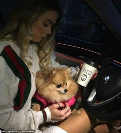 Фанатка Гуччи и ее померанский шпиц, а также BMW