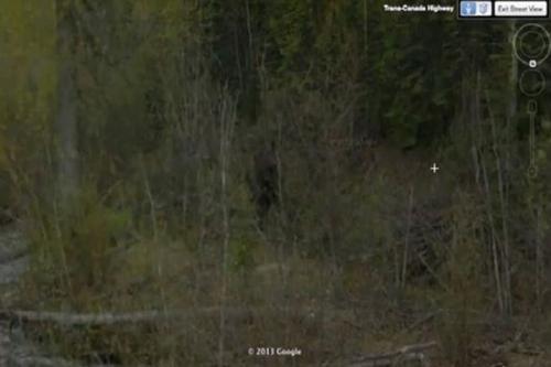 Бигфут в Британской Колумбии, Канада