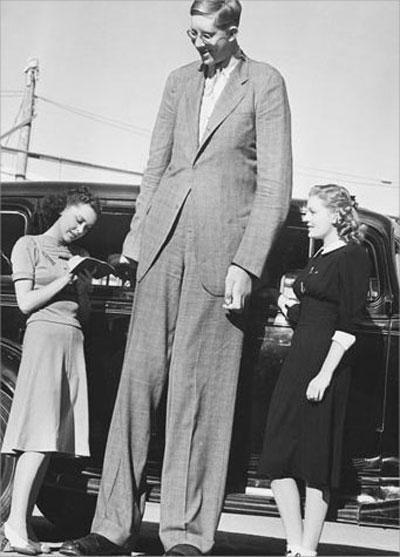 Самый высокий человек в мире и его короткая жизнь | STENA.