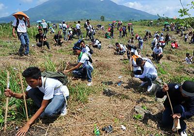 Наибольшее количество одновременно высаженных деревьев 64096 саженцев разных видов деревьев было высажено на участке в 32 гектара 23 февраля 2011 года на Филиппинах. В проекте приняли участие 6893 человека.