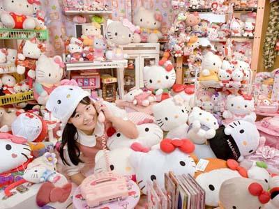 Крупнейшая коллекция предметов, связанных с «Hello Kitty» А эта коллекция принадлежит Асако Канде из Японии. Девушка до отказа заполнила свой дом различными предметами с этой мультяшной кошечкой - сковородки, вентиляторы и даже сиденье для унитаза.