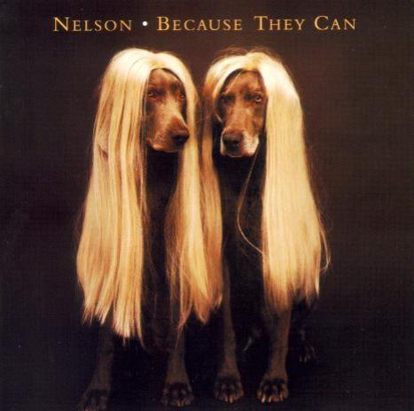 Nelson – «Because they can» (1995)