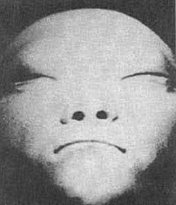 """""""Вот объясните мне, почему все народы народы мира рисуют пришельцев одинаково? Значит, они их видели!"""" - искренне считает Марк."""