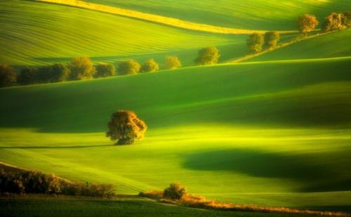 Южная Моравия, Чехия Это место все чаще и чаще называют Славянской Тасканией. Южная Моравия является, вероятно, одним из самых живописных регионов в Центральной Европе. Здесь вы найдете фантастические пейзажи, великолепные замки, богатый местный фольклор и знаменитые холмы, покрытые густыми лесами и многочисленными виноградниками.