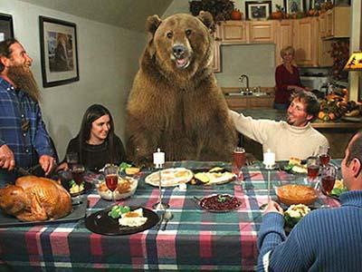 Медведь по кличке Брутус вырос среди людей. В настоящее время он успешно снимается в рекламе и веселит народ на свадьбах, а также вполне гармонично чувствует себя за столом.