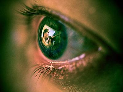 «Глазами поклонника». В процессе создания фотографии использовалась макросъемка.