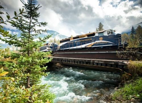 ���� ����������, ������
