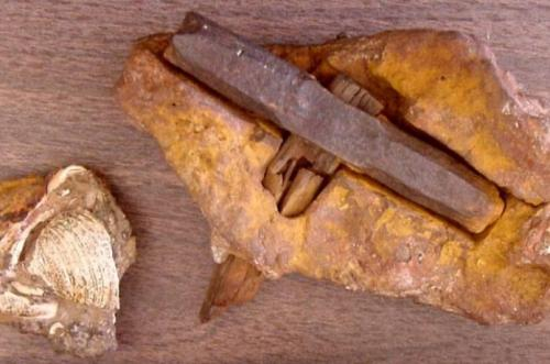 4. Лондонский молоток Из-за лондонского молотка можно начинать переписывать заново книги по геологии. Что делал молоток в скальных образованиях возрастом в 400 миллионов лет? Кстати, молоток был найден не в Англии, а в штате Техас возле небольшого поселения Лондон. Можно, конечно, предположить, что это мистификация, но геологи подтвердили возраст скальной породы, в которой «застрял» молоток.
