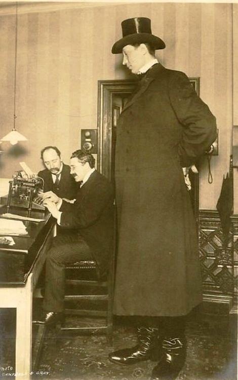 Согласно Книги рекордов Гиннесса, самый высокий человек в истории, о росте которого имеются несомненные сведения является Роберт Уодлоу, который жил в Америке в начале двадцатого века. Его рост достигал 272 сантиметра.