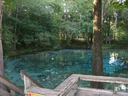 Ginnie Springs, Флорида, США