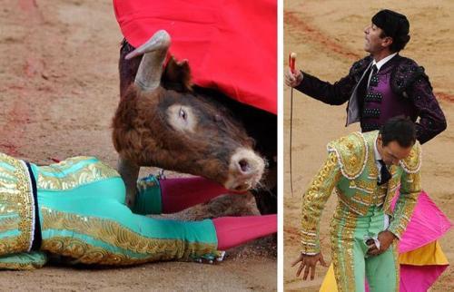 Матадорам «проколы» в одежде известны не понаслышке. Особенно хорошо осведомлён об этом испанский матадор «Эль Сид»…