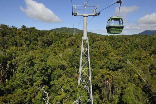 Skyrail Rainforest Cableway, ���������.