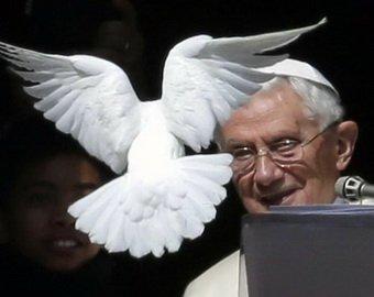 «Голубей мира» Папы Римского атаковали чайки и ворон