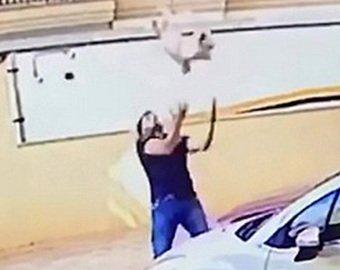 Мужчина поймал падающего с девятого этажа щенка
