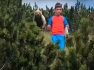 Реакция мальчика на встречу с медведем «взорвала» сеть