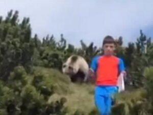 Мальчик уходит от медведя