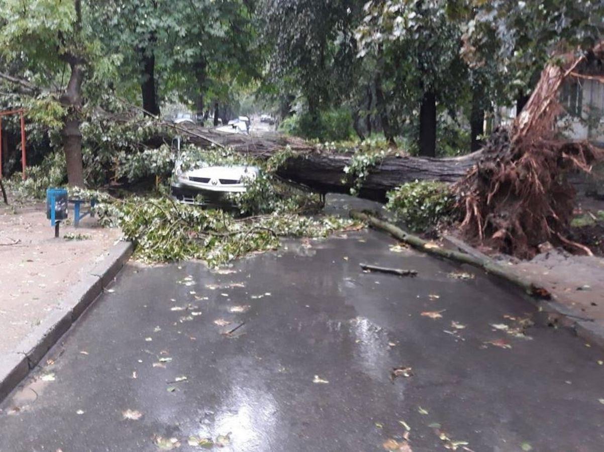 Мощный ураган в Чечне попал на видео